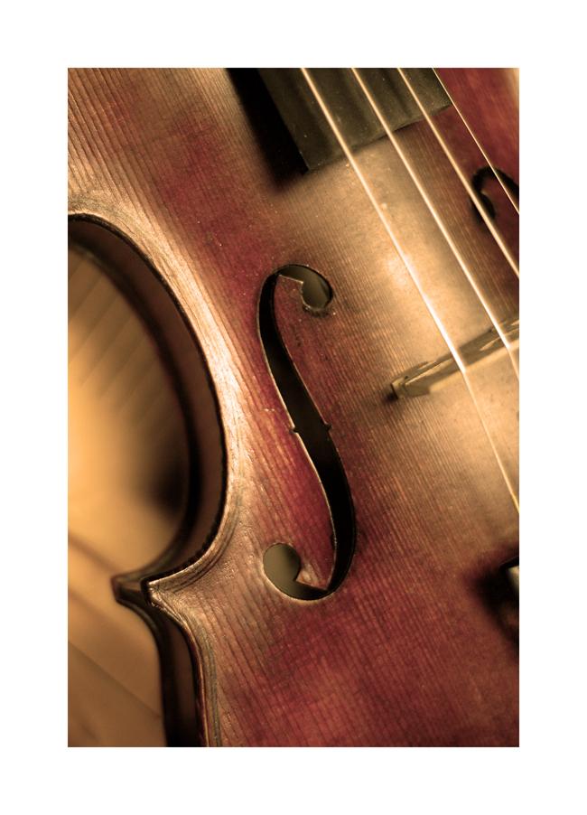 Violin by 0bsessi0n