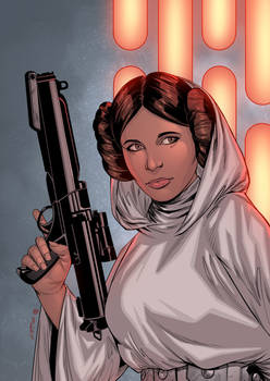 Princess Leia - colors
