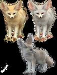 PNG Fox 2