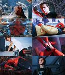 Peter Parker Part III