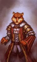 Tiger by Dandzialf
