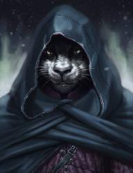 Rogue 2 by Dandzialf