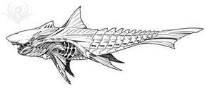 Shark Alien