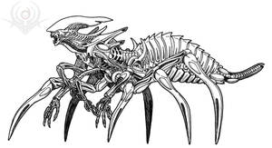 Spider worker Alien