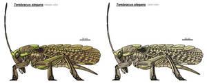 Locustoid by scorpenomorph