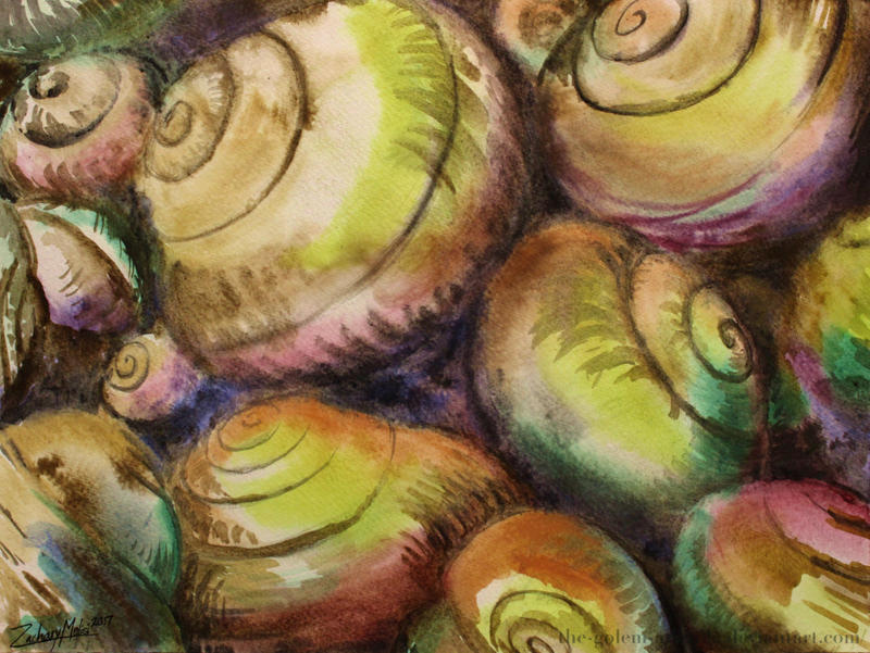 Seashells by The-Golem-Armada