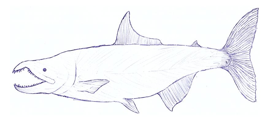 Hunter-salmon by JWArtwork