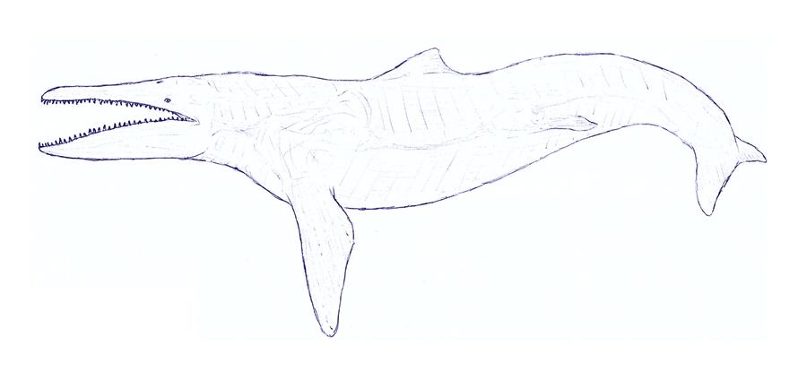 Alligator chevrotain-dolphin by JWArtwork