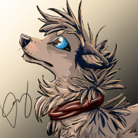 a wolf drawing by Aleris37