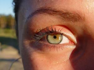Diana's eye