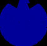 S.H.I.E.L.D. Logo 1