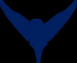 Nightwing Logo 2