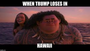 Hillary Wins Hawaii