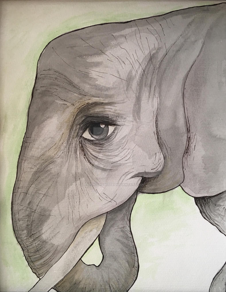 Watercolor Elephant by green-cassette