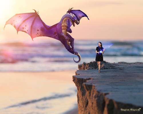 Dragon Princess Adventures