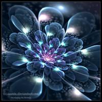 Midnight bloom for Chiara by Liuanta