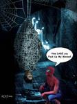 Spiderman Revenge