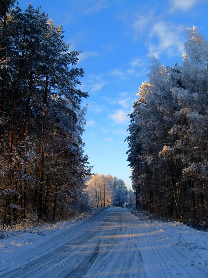 Frozen 2 by Angie-AgnieszkaB