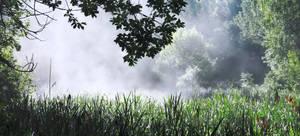 Just white fog