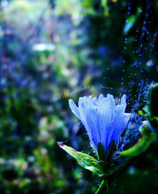Fairytale by Angie-AgnieszkaB