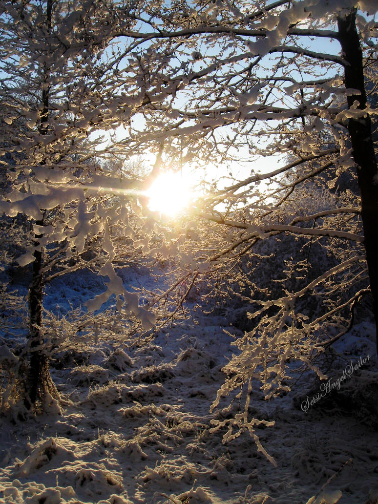 Swiatlo z krainy sniegu by Angie-AgnieszkaB