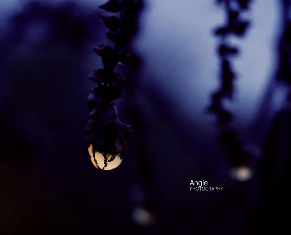 Lantern by Angie-AgnieszkaB