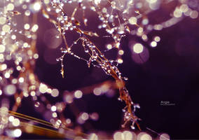 Shinining by Angie-AgnieszkaB