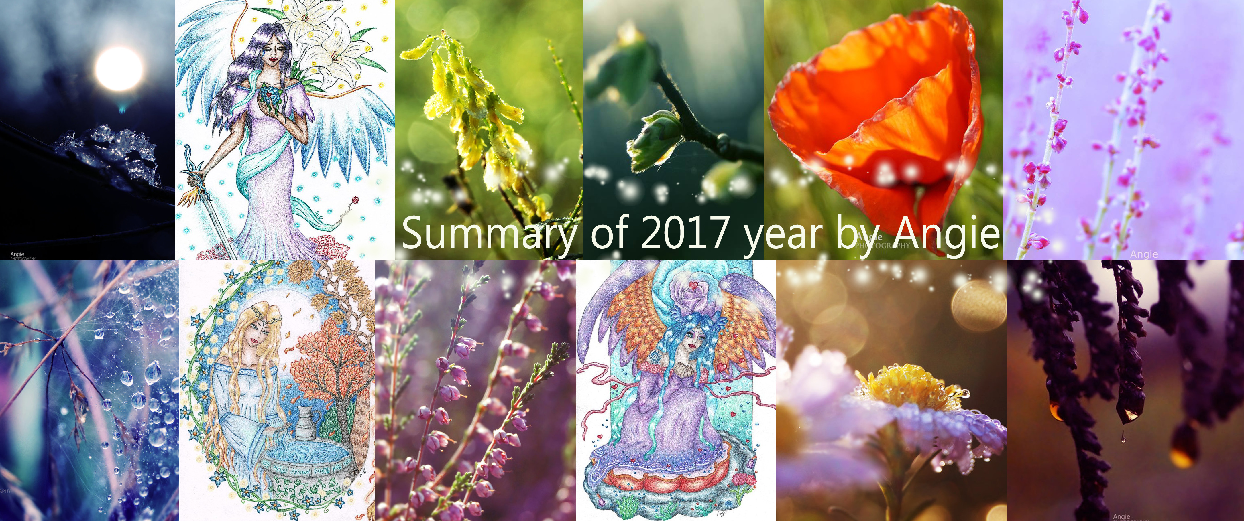 Summary of 2017 by Angie-AgnieszkaB
