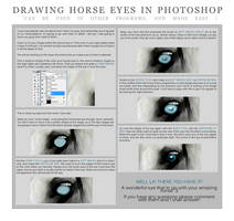 Drawing Horse's Eyes by ZodiaqueAries