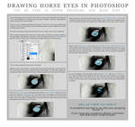 Drawing Horse's Eyes