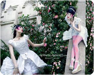 Attar of Rose by silvergrey