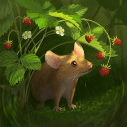 Summer Mouse by love--or--death