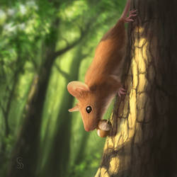Squirrel Mouse by love--or--death