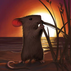 Sunset Mouse by love--or--death