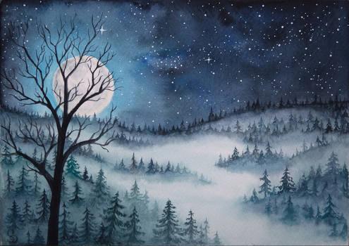 Misty Forest Night