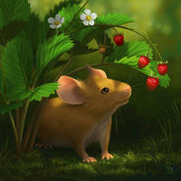 Strawberry Mouse (Draw This Again)