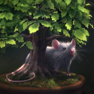 Bonsai Mouse