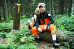 Naruto - Training Grounds