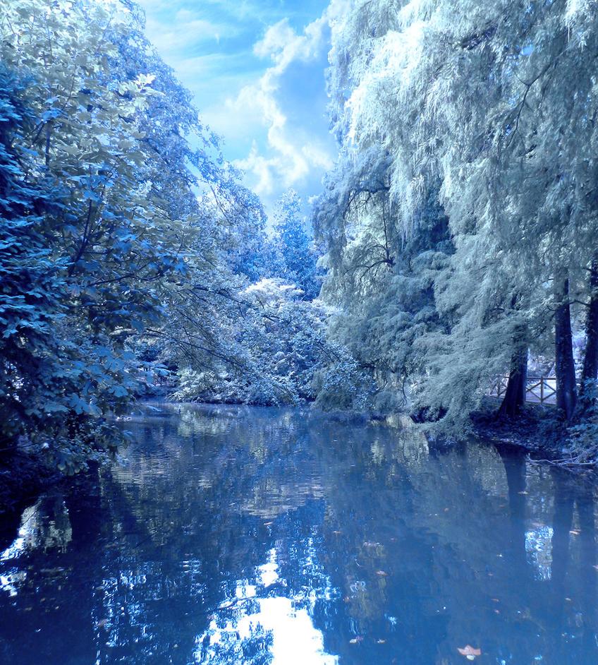 Winter pond by Vidom