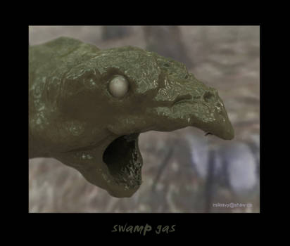 swampGas
