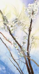 Pollen Faeries by puimun
