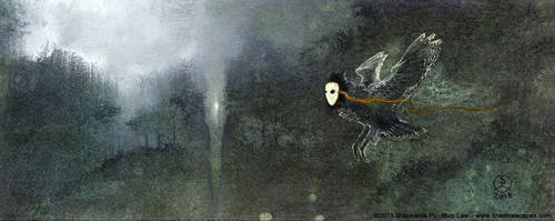 Through the Veil by puimun