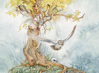 Treeshape by puimun