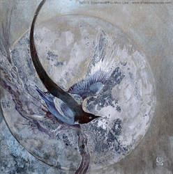 Magpies: Five for Silver by puimun