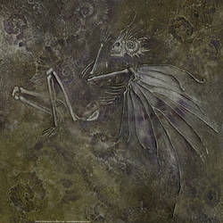 Fairy Fossil by puimun