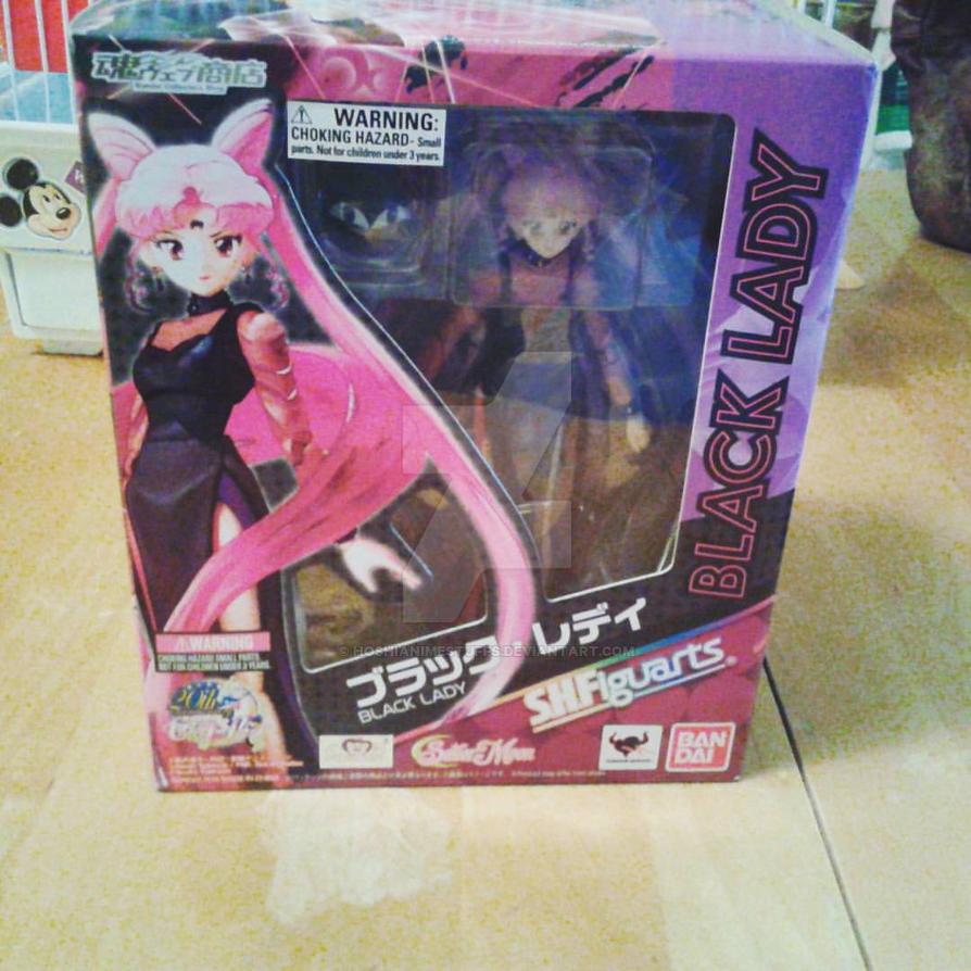 Black Lady Figuarts figure by HoshiAnimeStuffs
