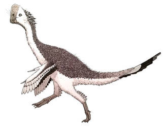 Oviraptor, none other by ZEGH8578