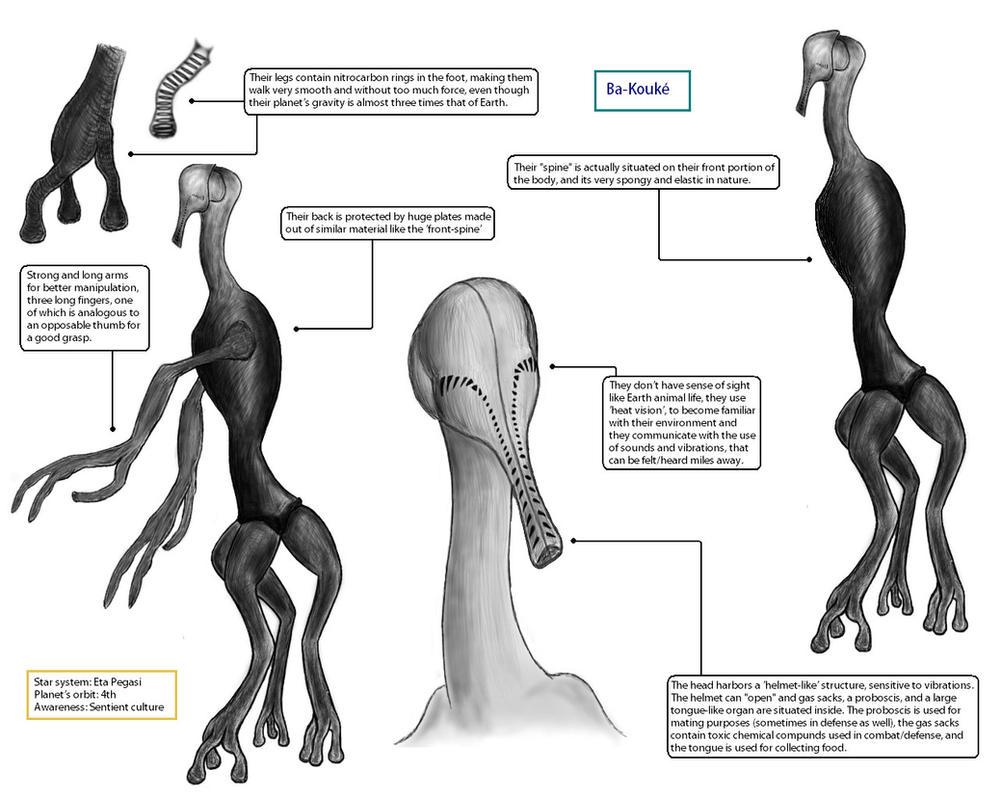 Ba-Kouke Alien Species Concept by NeptuneGate