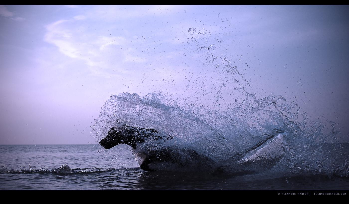 Watery Sculpture by Jollyoldgeezer