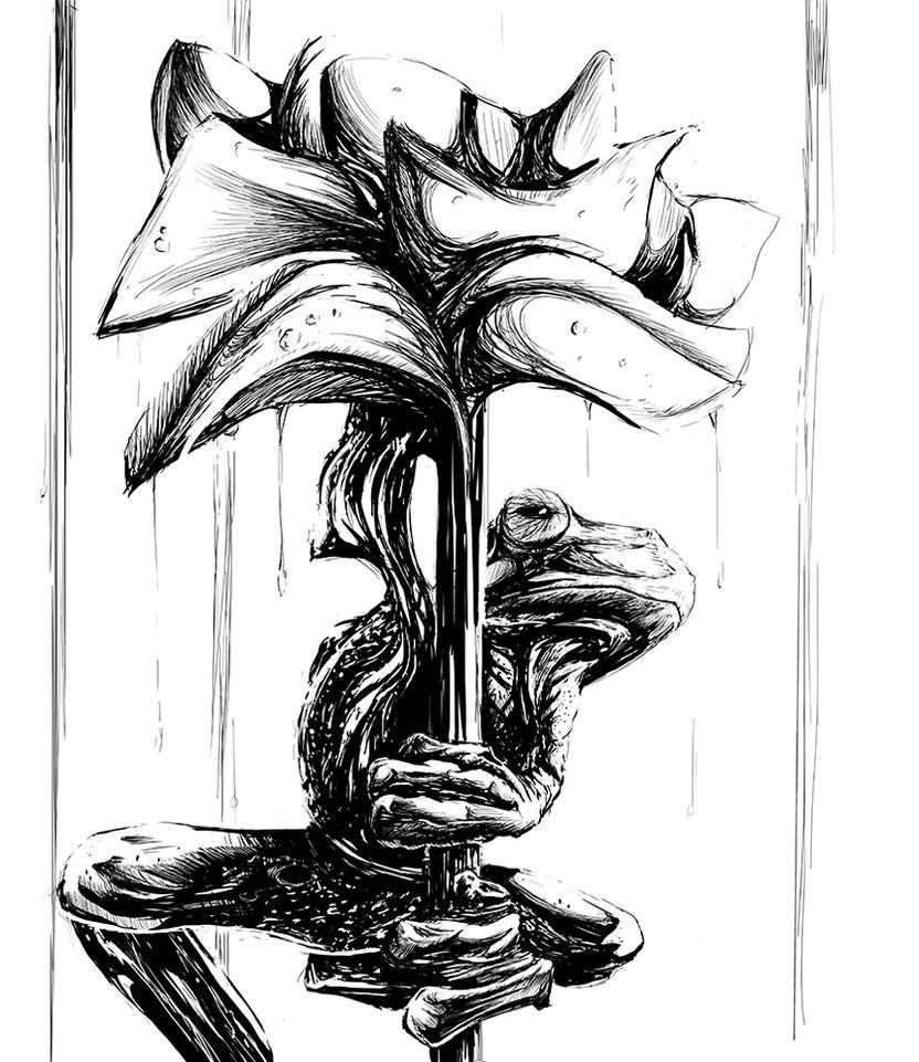 Frog Sketch 42 by cav